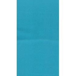 Polaire - Turquoise