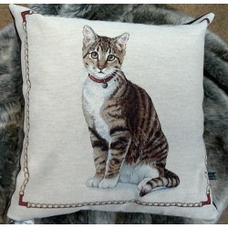 COUSSIN PUPUCE