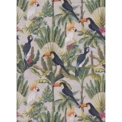 Oiseaux des tropiques